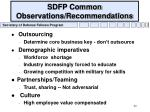 sdfp common observations recommendations40