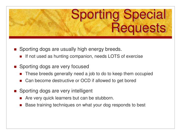 Sporting Special Requests