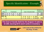 specific identification example1