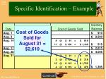 specific identification example3