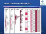 virtual library profile diversity