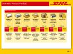 domestic product portfolio