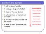 examples of a business