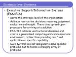 strategic level systems1