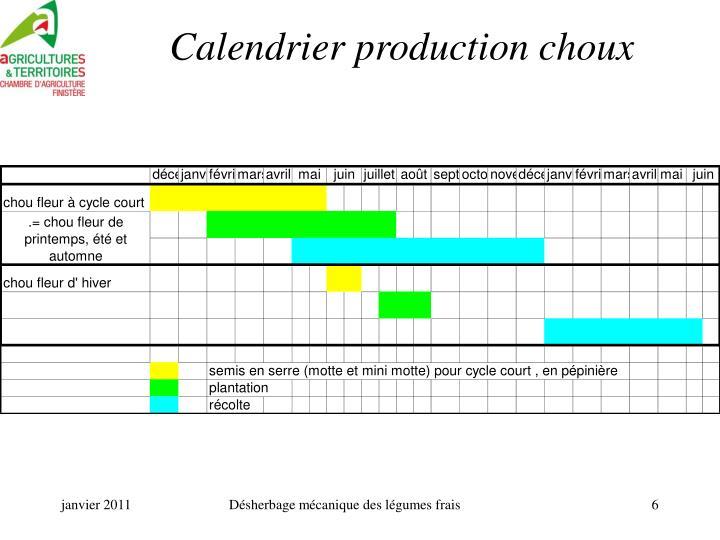 Calendrier production choux