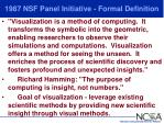 1987 nsf panel initiative formal definition