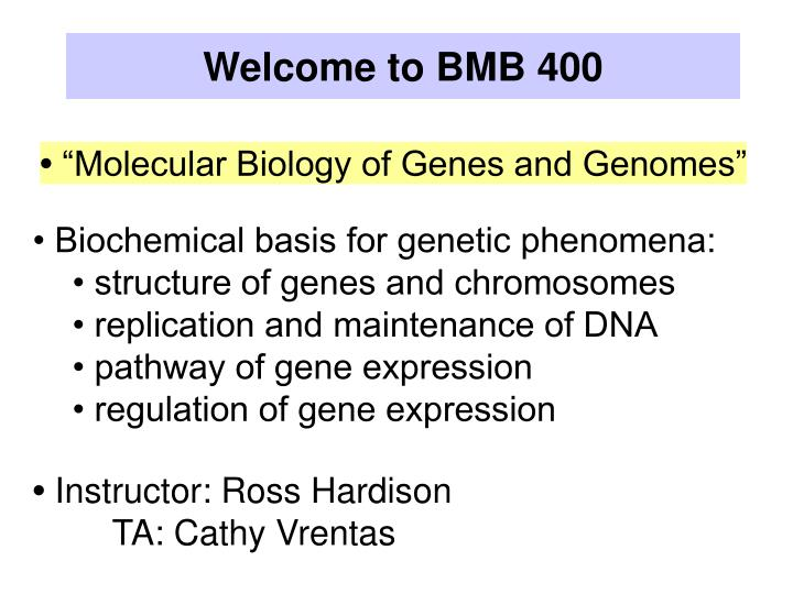 welcome to bmb 400 n.