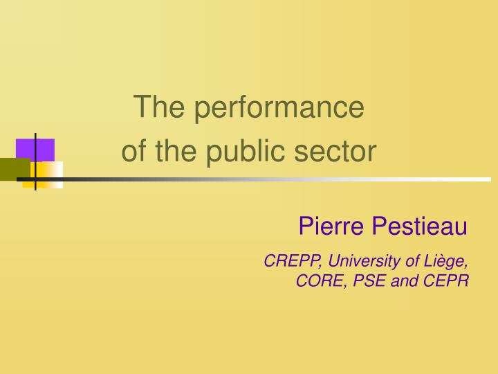 the performance of the public sector n.