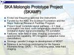 ska molonglo prototype project skamp