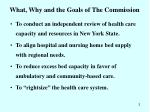 what why and the goals of the commission