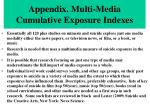 appendix multi media cumulative exposure indexes