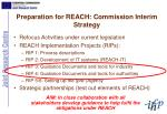 preparation for reach commission interim strategy
