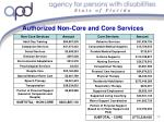 authorized non core and core services