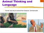 animal thinking and language4
