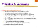 thinking language