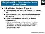 bargaining unit determination in the public sector