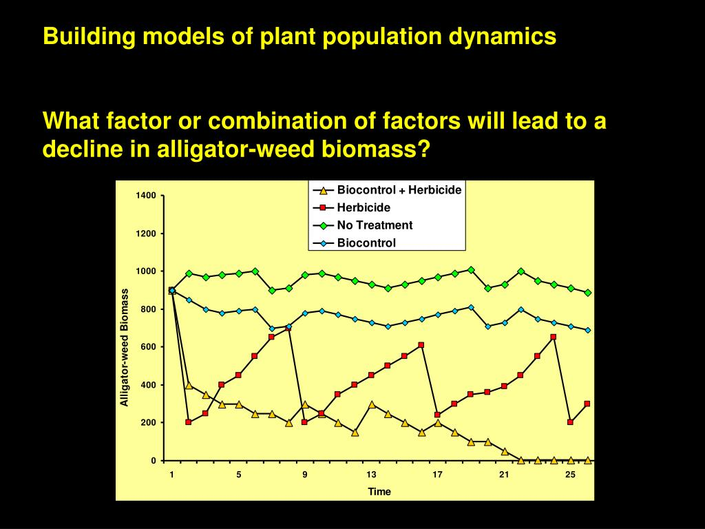 Building models of plant population dynamics