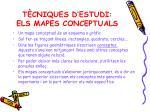 t cniques d estudi els mapes conceptuals