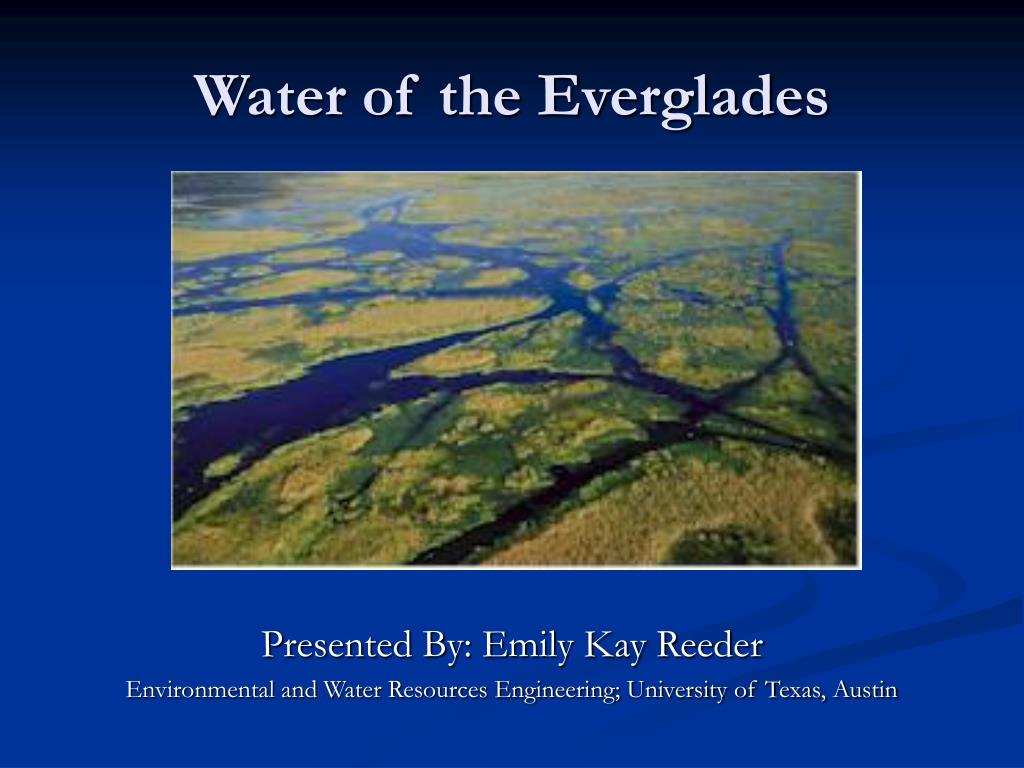 water of the everglades l.
