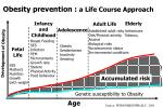 obesity prevention a life course approach