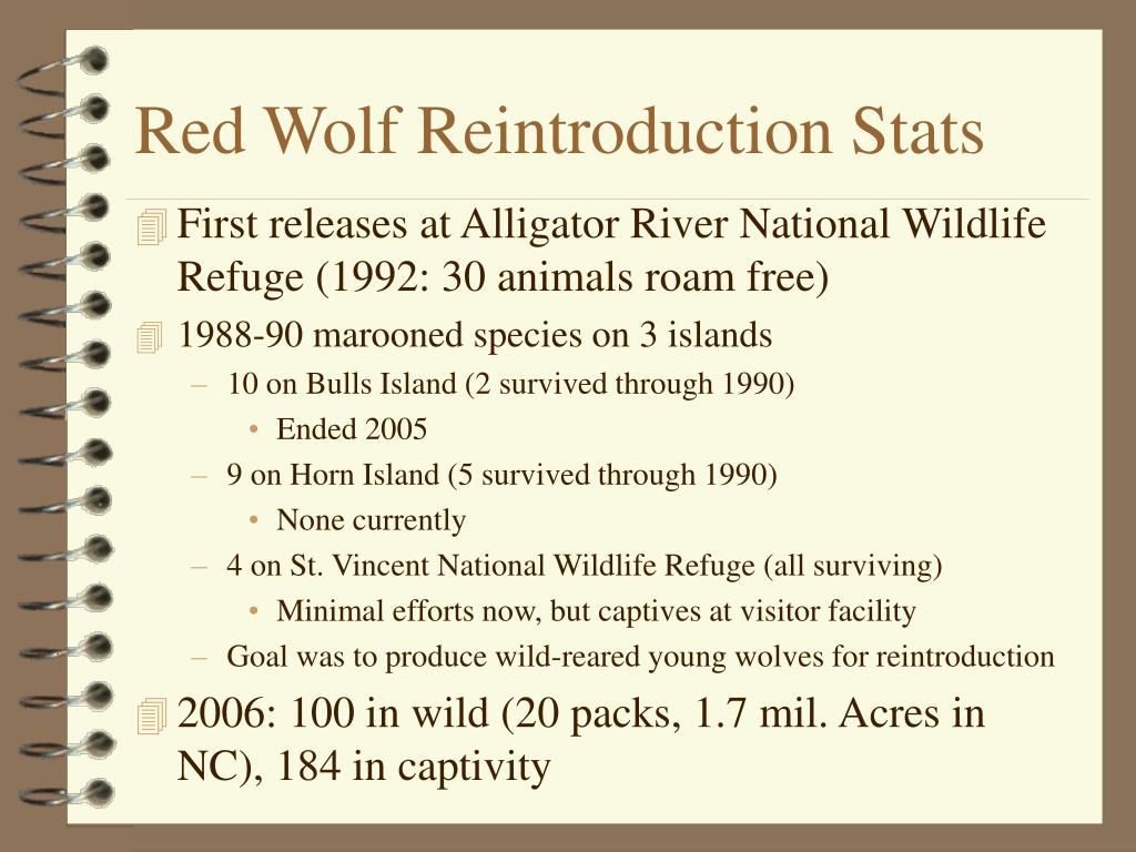 Red Wolf Reintroduction Stats
