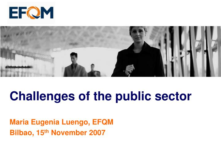 challenges of the public sector n.