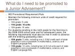 what do i need to be promoted to a junior advisement