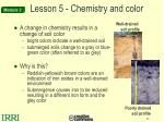 lesson 5 chemistry and color