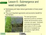 lesson 6 submergence and weed competition