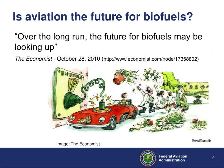 Is aviation the future for biofuels