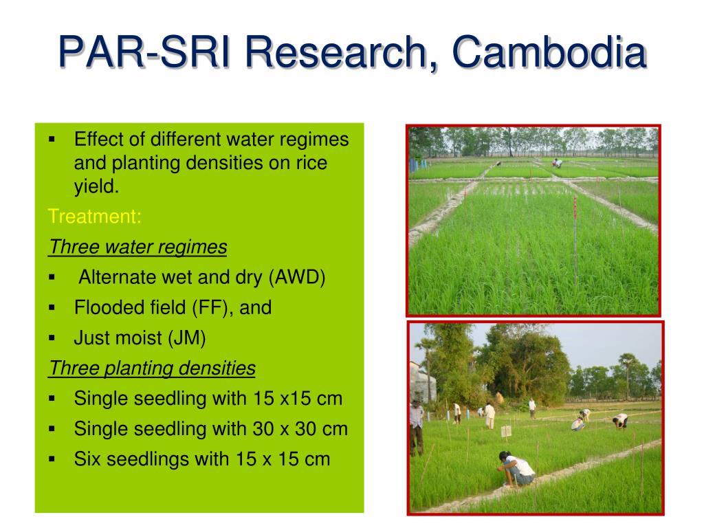 PAR-SRI Research, Cambodia