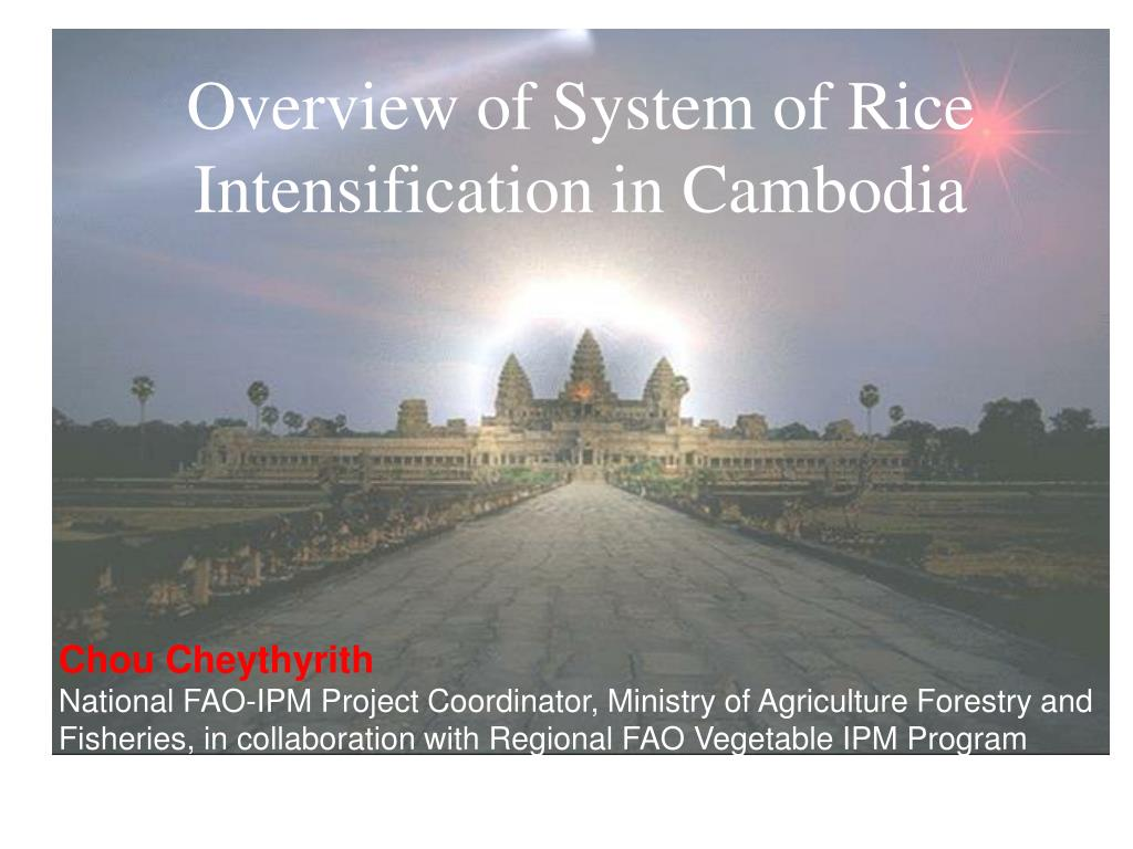 Overview of System of Rice  Intensification in Cambodia
