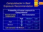 campylobacter in beef exposure recommendation1