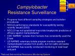 campylobacter resistance surveillance