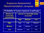 exposure assessment recommendation template