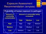 exposure assessment recommendation template2