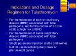indications and dosage regimen for tulathromycin