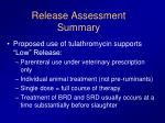 release assessment summary1