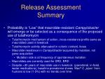 release assessment summary3