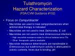 tulathromycin hazard characterization fda cvm guidance 152