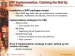erp implementation catching the bull by the horns