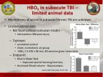 hbo 2 in subacute tbi limited animal data