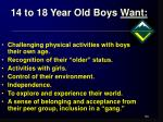 14 to 18 year old boys want