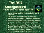 the bsa smorgasbord to better serve high school age youth