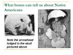 what bones can tell us about native americans