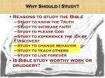 why should i study
