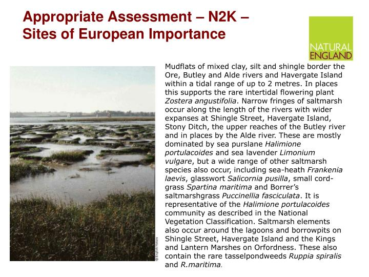 appropriate assessment n2k sites of european importance n.