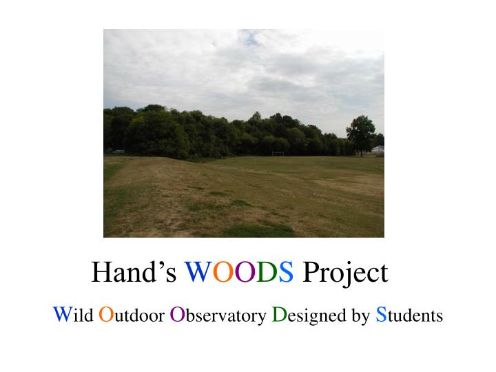 hand s w o o d s project n.