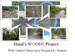 hand s w o o d s project2