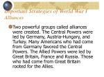 important strategies of world war i alliances